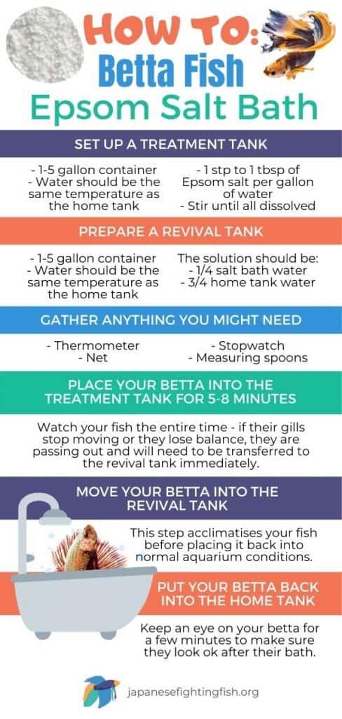 How to Give Your Betta Fish an Epsom Salt Bath