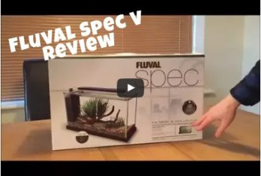 Fluval Spec V Review and Unboxing